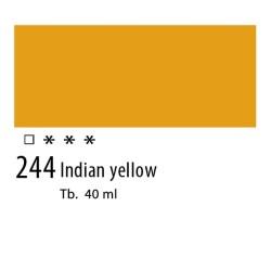 244 - Olio Van Gogh Giallo indiano