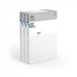 CM.30X30 - Set 3 Telai telati Winsor & Newton 100% cotone 350 gr/mq, spessore doppio