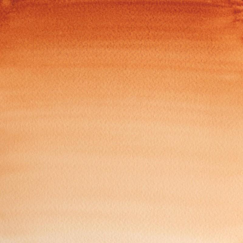 074 - W&N Professional Terra di Siena bruciata