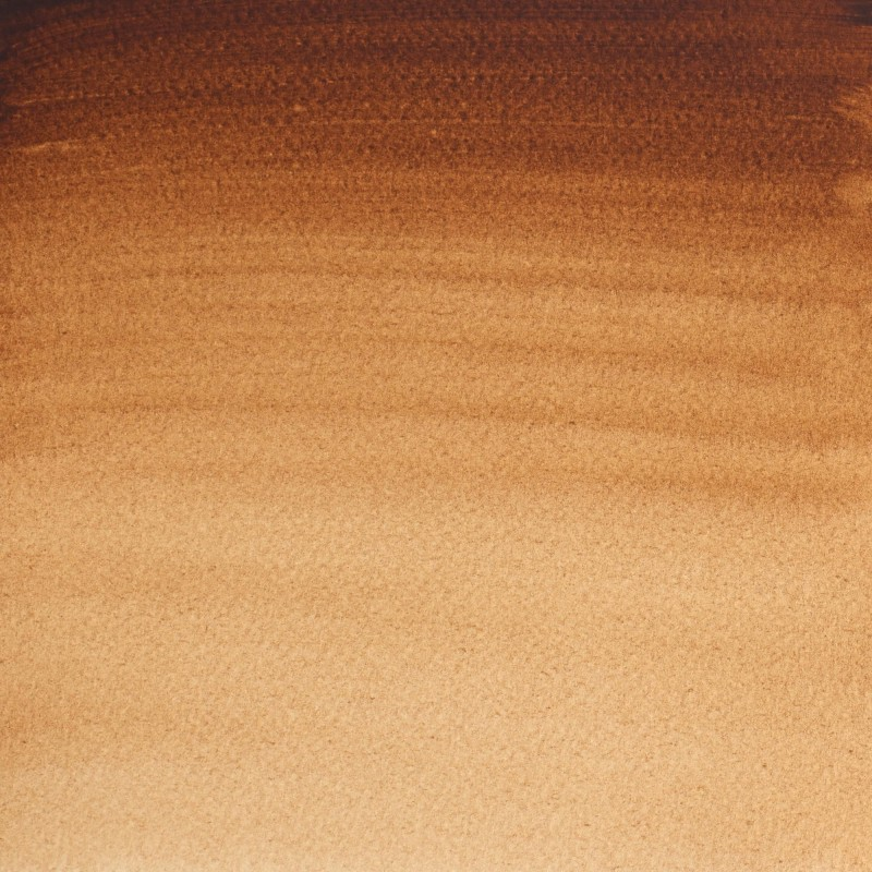 076 - W&N Professional Terra d'ombra bruciata