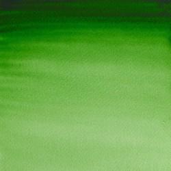 311 - W&N Professional Verde di Hooker