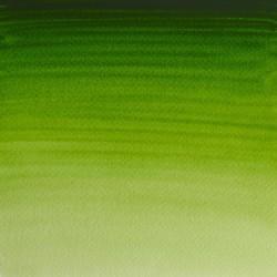 503 - W&N Professional Verde vescica permanente