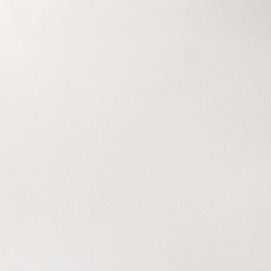 644 - W&N Professional Bianco di titanio (bianco opaco)