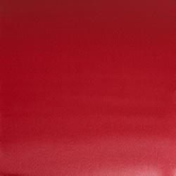 725 - W&N Professional Rosso Winsor scuro