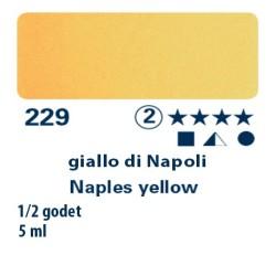 229 - Schmincke acquerello Horadam giallo di Napoli